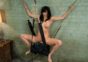 Dark haired girl Holly Michaels rides a Sybian that has been suspended