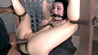Tightly Bound Brunette Hottie Veruca James Gets Banged In Mish Style Hard