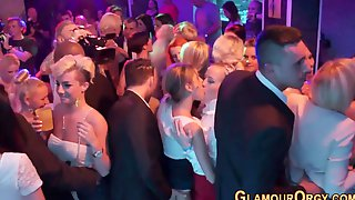 Bride Sucks Dick At Party