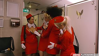 Gorgeous Stewardess Attacked By A Randy Fellow In A Toilet
