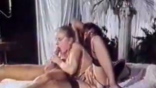 tegneserie bbw sex