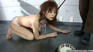 Short Haired Nympho From Japan Miina Yoshiwara Gets Tied Up And Mouthfucked