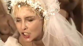 Hochzeit Pervers