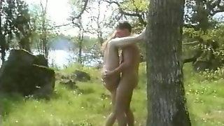Svenska Folkets Sexvanor 4 (1994)