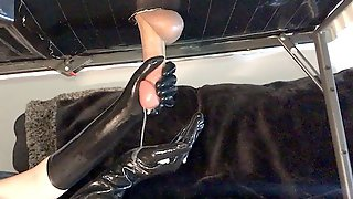 Cock Milking Table With Latex Gloves