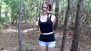 Tied Up In The Woods