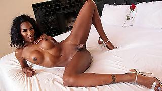 Damn Hot Ebony TS Natassia Fucks Her Escort Agent Pierce