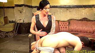 Mature Transsexual Female Domination Spanking Submissive Wolf