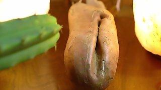Sweet Potato Vagina Fucking The Pain Away With A Cactus