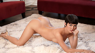 TBabe Daisy Taylor Finally Gets A Chance To Ride Her Stepbros Johnson