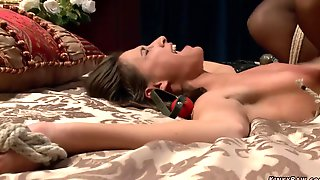 Tied Stunner Rectal Pounded By Courier