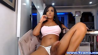 Awesomely Big And Hard Tgirl Pecker