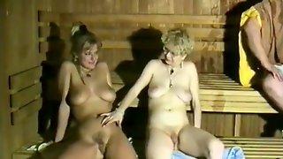 Astrid Pils In Die Sexfidele Bayernsauna (1990, German Dvd)