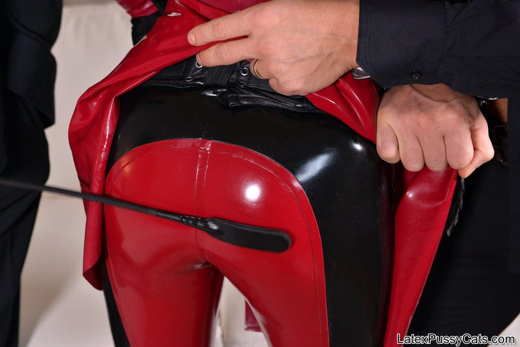 Latex Pussy Cats Latex Lucy