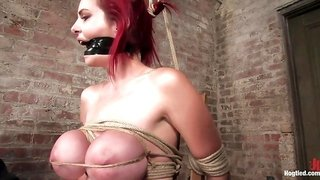 Mz Berlin in Berlin And Her Huge Monsterous, Massive Breasts Are Back For Hard Bondage At Its Best. - HogTied