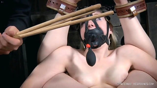 Fabulous xxx clip Hogtied try to watch for only here