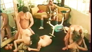 Party on the Collage (1979)