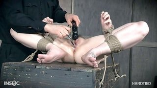 perverted master has fun with his slave bitch