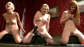 The Final Pussy Battle Royal: Round 3 of the Amateur Contest