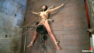 Nipples pull 1 way, neck rope pulls the other. 2 options: breathe or suffer. All while cumming.