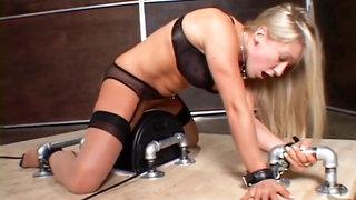 Bondage fuck machine doggy style on a sybian