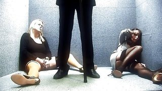 Emateur women get banged by a complete stranger in elevator