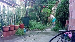 Yesterday Evening - watering the garden